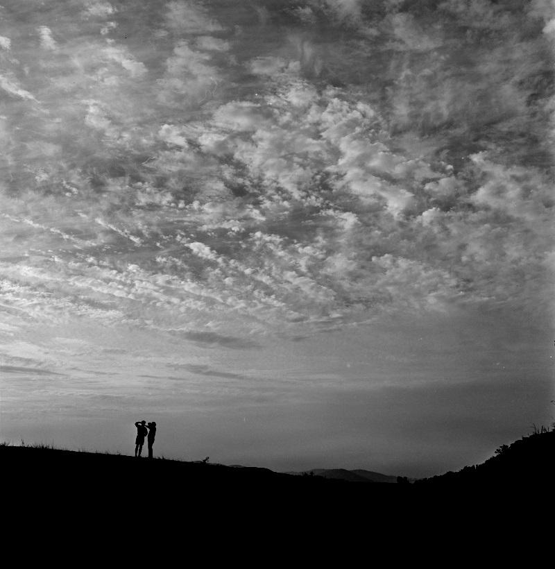 Canberra landscape, 1950s