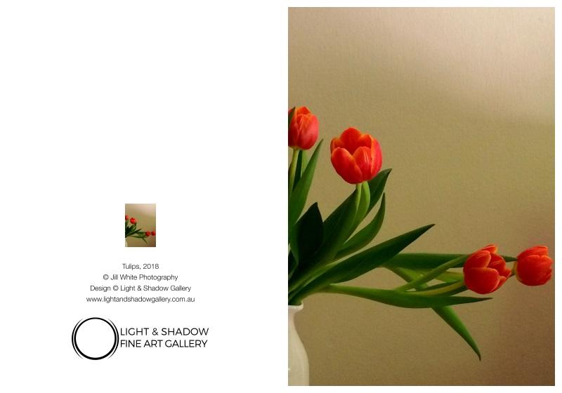 Tulips 5x7