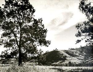 Rural landscape 1960s